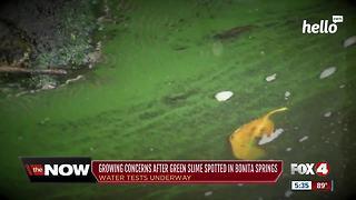 Blue-Green Algae Spotted in Bonita Springs, Concerns Beachgoers