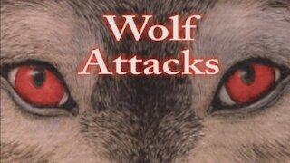 Werewolfentary Part Four ( Werewolf Documentary )