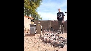 Senior Citizen Kicks Butt in Mesa, Arizona