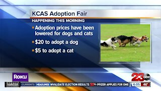 Kern County Animal Services hosting an adoption fair this morning