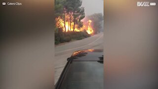 Immagini degli incendi in Grecia