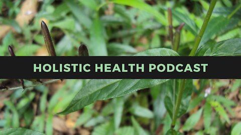 Holistic Health Podcast #4: Pfizer and BlackRock? ADE May *Require* Boosters?