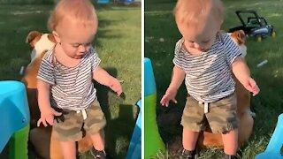 Baby boy uses bulldog friend to help him dance