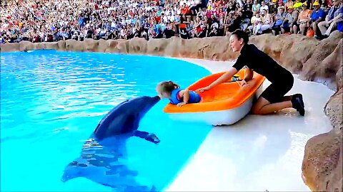 Dolphin kisses a little girl and brings her a gift