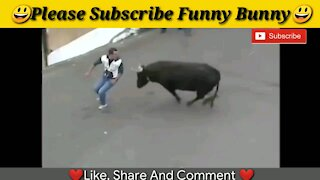Best funny videos 2021 Most awesome bullfighting festival funny crazy bull fails