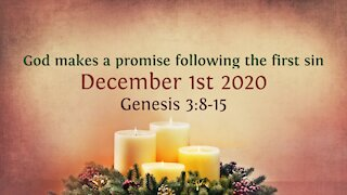 God makes a promise following the first sin - Advent Devotional 1st Dec. '20