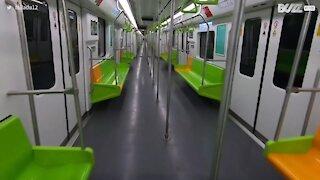 Coronavirus: Shanghai est devenue une ville fantôme !