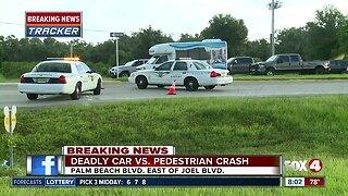 Vehicle versus pedestrian crash Fort Myers