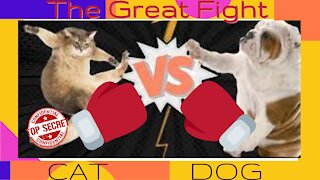The Great Fight !!
