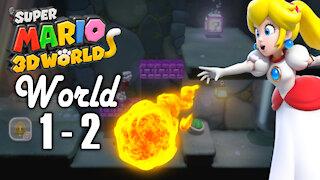 Super Mario 3D World - World 1 - 2