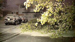 April snow covers Northeast Ohio