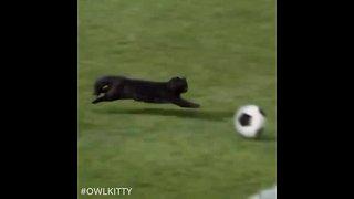 Super cat scores epic soccer goal