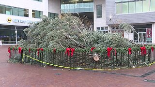 Downtown Boise's holiday tree lighting rescheduled