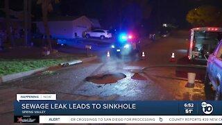 Sewage leak leads to sinkhole