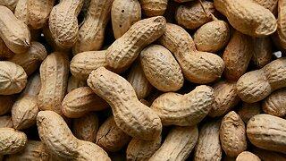 FDA Panel Recommends New Peanut Allergy Treatment