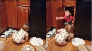 Babies fight over a cabinet!