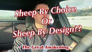 Sheep By Choice OR Sheep By Design?? ~ The Great Awakening ~