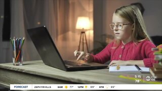 Florida Virtual School counselor provides parents tips for distance learning