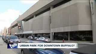 Urban park for downtown Buffalo?