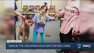 United Way needs therapy dogs