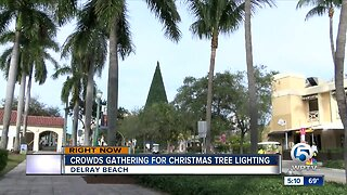 Crowds gathering for Christmas tree lighting
