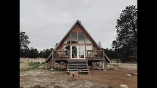 FULL SCALE TREEHOUSE! Coolest Airbnbs in Arizona - ABC15 Digital