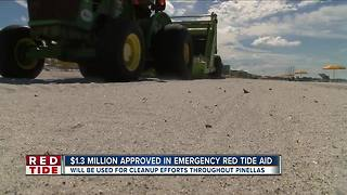 $1.3 million grant approved in emergency red tide aid
