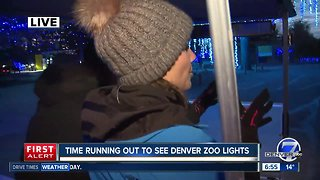Tickets for Denver Zoo's 'Zoo Lights' now available for purchase