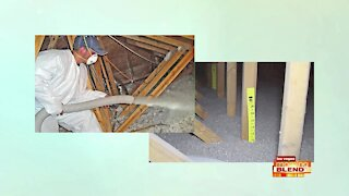 Insulating Your Home Against Pests