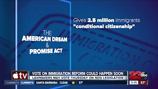 Vote on immigration reform
