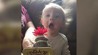 Baby Playtime