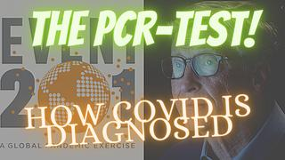 THE PCR TEST used for Covid Diagnoses