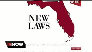 New Florida laws go into effect on Sunday