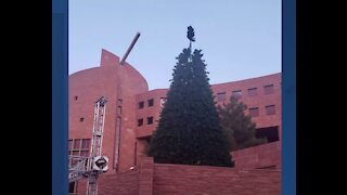 Christmas tree at Government Center lights up the sky