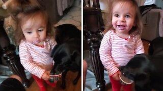 Selfish dog straight up steals yogurt from little girl