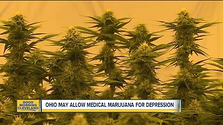Ohio considering allowing medical marijuana for depression, 4 other conditions