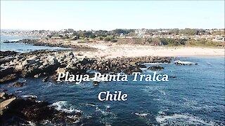 Playa Punta Tralca in Chile