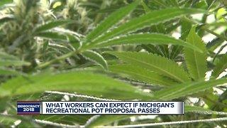 The impact of recreational marijuana in Michigan