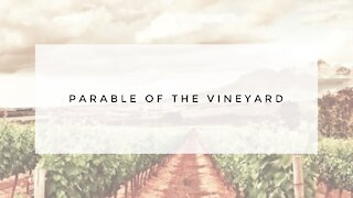 9.30.20 Wednesday Lesson - PARABLE OF THE VINEYARD