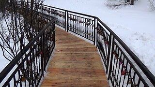 Walk On The Wooden Bridge And Winter Forest