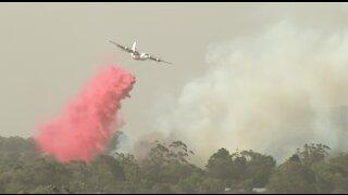 Australian bushfire emergency at South Turramurra