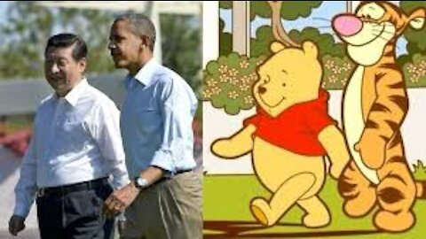 Winnie the Pooh Protests
