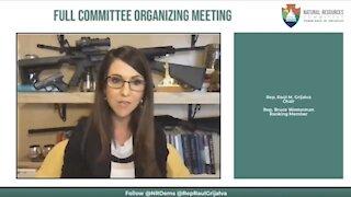 Liberals LOSE IT AGAIN Over Lauren Boebert's Case Against Gun Control