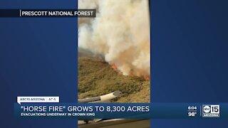 Horse Fire in Arizona has burned 8,300 acres