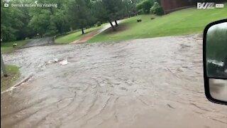 Deux jeunes profitent d'une tempête pour faire du canoë