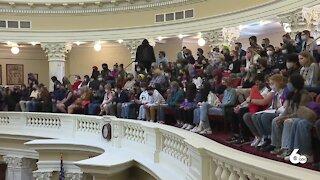 Idaho Senate passes controversial education bill 27-8