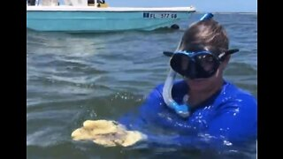 Treasure Coast woman gives oyster farming a go
