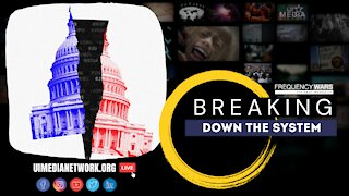 Breaking down the System | Alex Newman