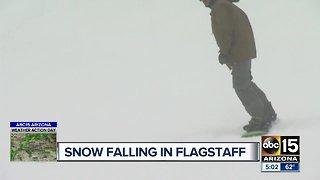 Snow falling in Flagstaff