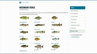 IN DEPTH: Fishing season begins this weekend